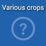 variouscrops_concept
